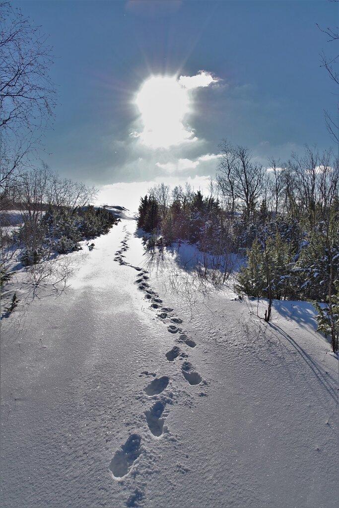 Talvine-jalutuskaeik-2.JPG