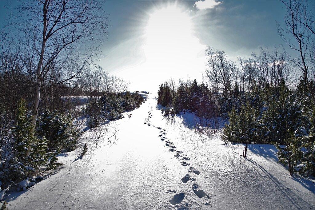 Talvine-jalutuskaeik.JPG
