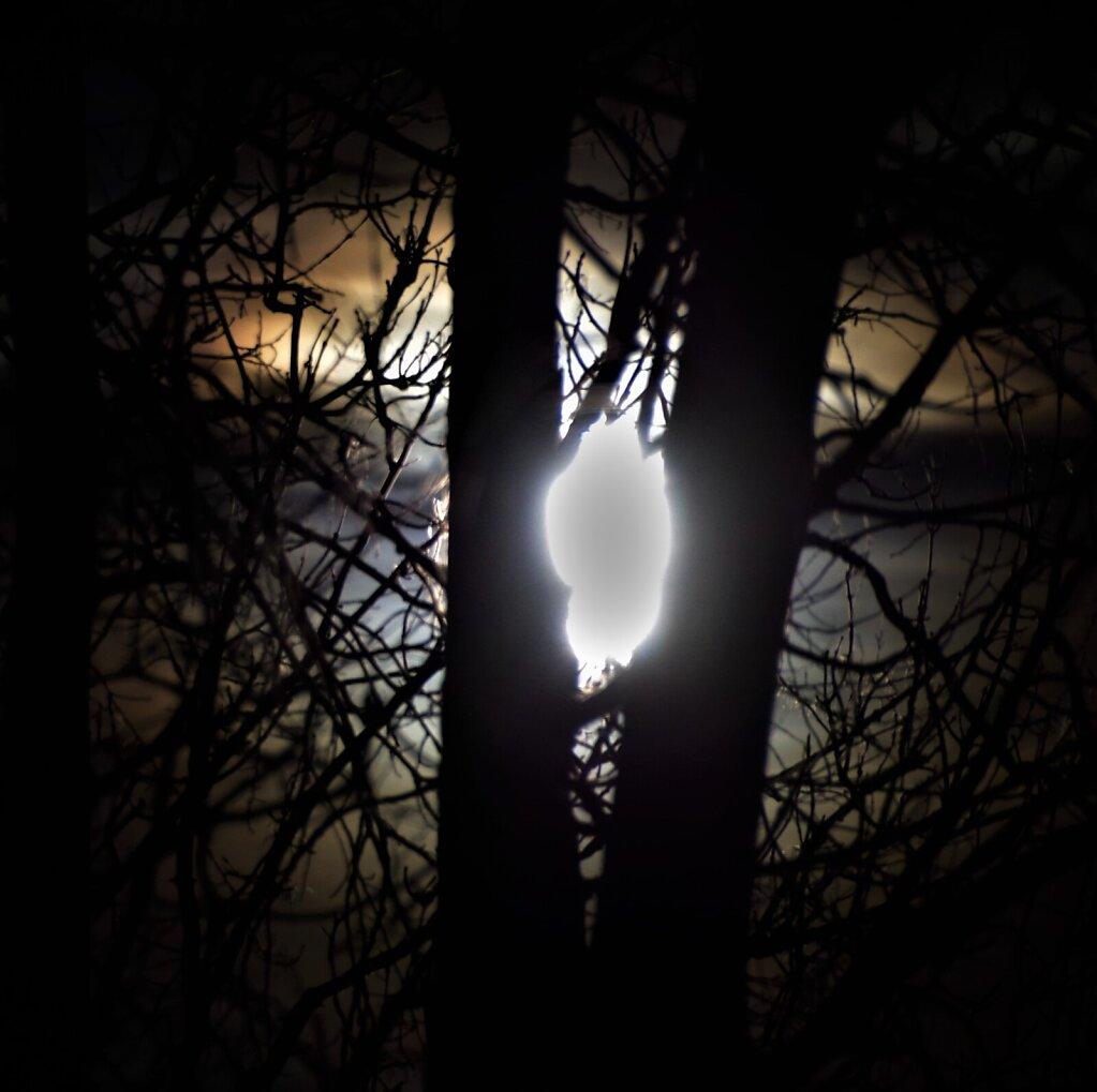 Kuu piilub